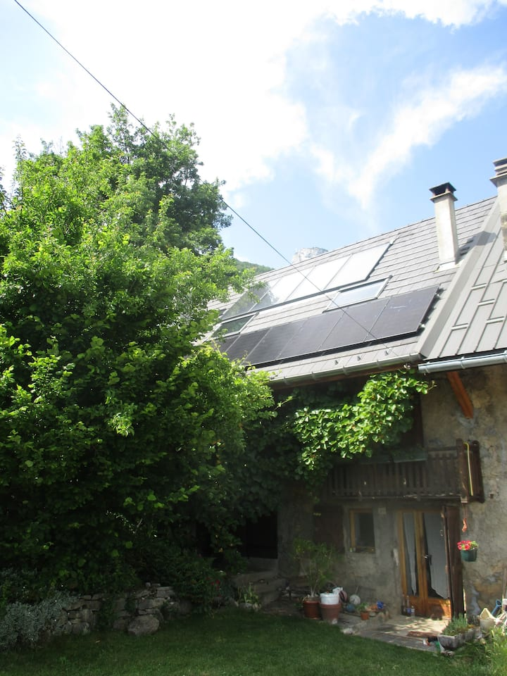 Maison verte à la montagne