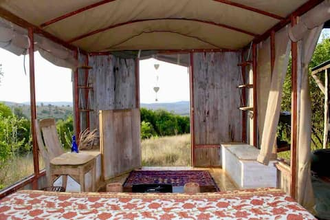 The Wagons, Loltunda Farm, Chumvi Borana Laikipia
