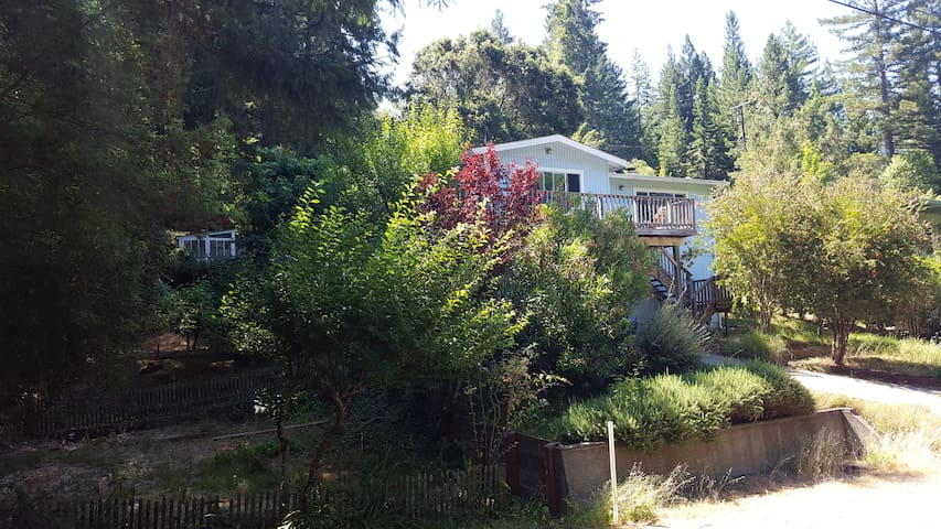 The Wright Cottage - Walk to Guerneville - Hot Tub - Guerneville