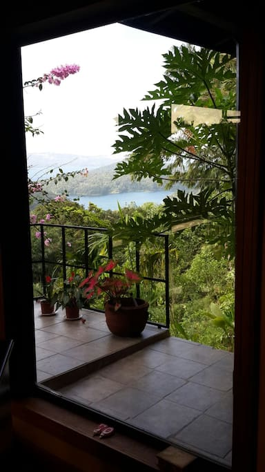 Direct view from the bedroom to the arenal lake and early morning wild perots!!