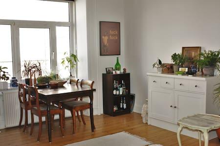 Dejlig lejlighed i Aalborg - Aalborg