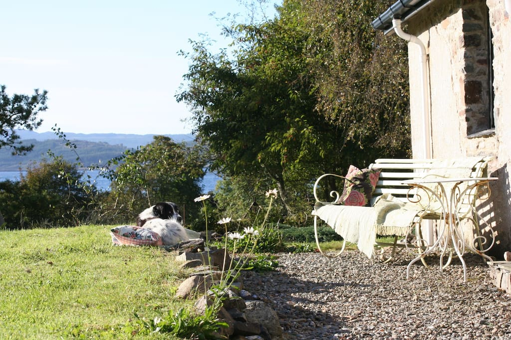 October 2016 - beautiful sunshine.  Both dog and guest enjoy the day on the south/west garden front of the cottage