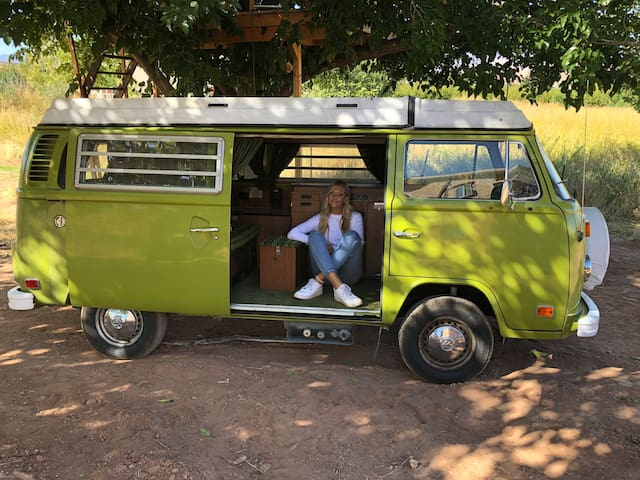 Volkswagen Westfalia bay windows.  Sleeps 4