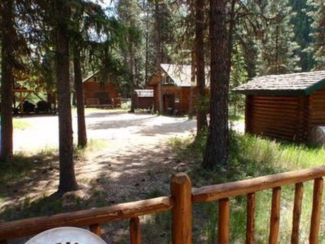 Private Cabin with Loft & view of Clark Fork River