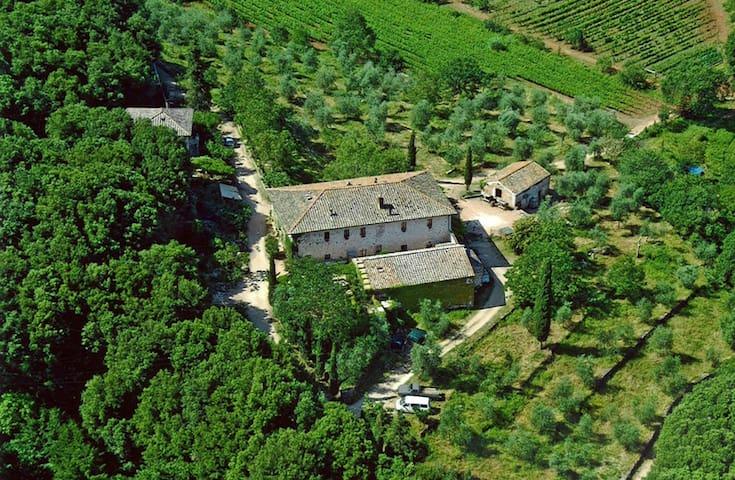 Charming villa and organic farm