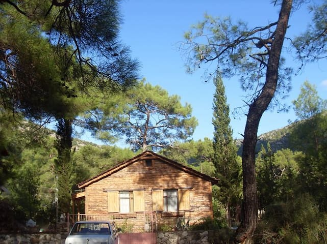 forest cottage - Kumluca Antalya - Hus