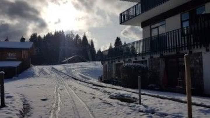 Studio ski aux pieds Les gets