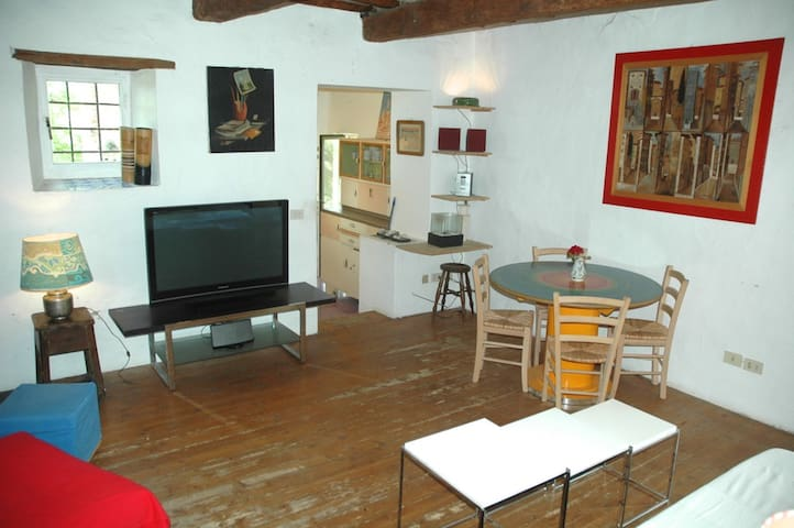 The Stone Barn In Chianti Florence - San Casciano in Val di pesa - Appartement