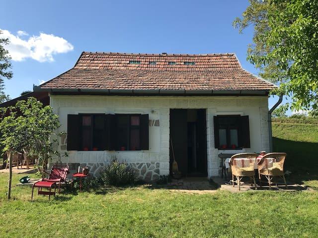 Authentiek wijnhuisje in Zuid Hongarije nabij Pécs