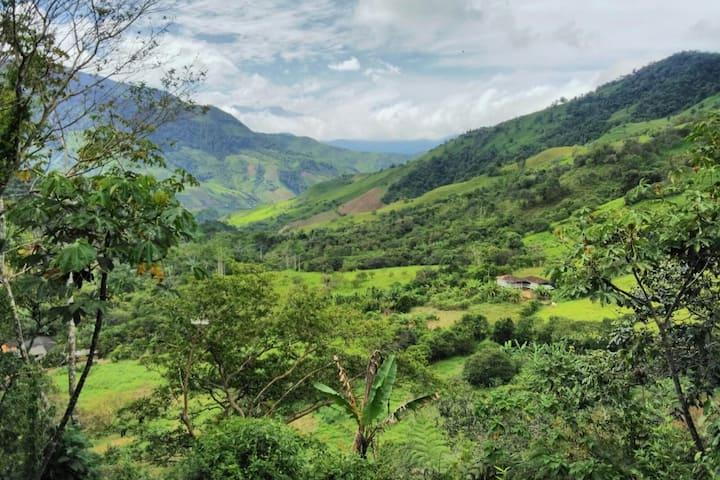 Hacienda Primavera, Ecuador