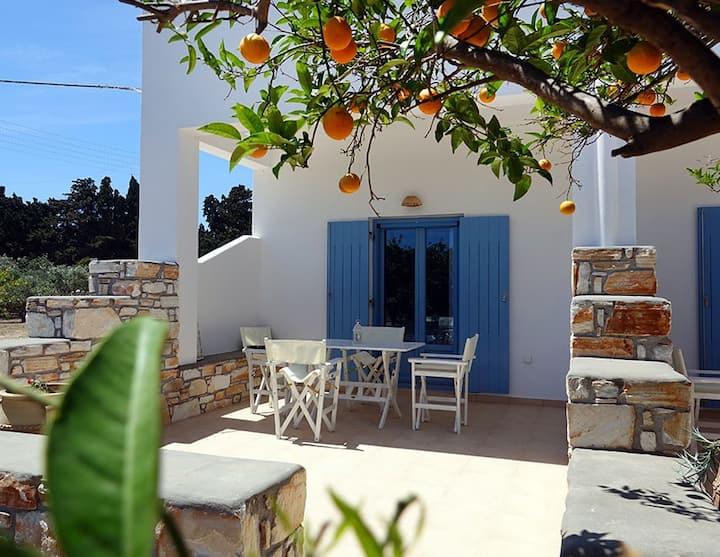 Flora Apartments | Levander