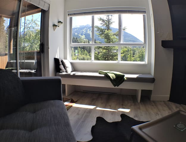 Blackcomb from your couch!