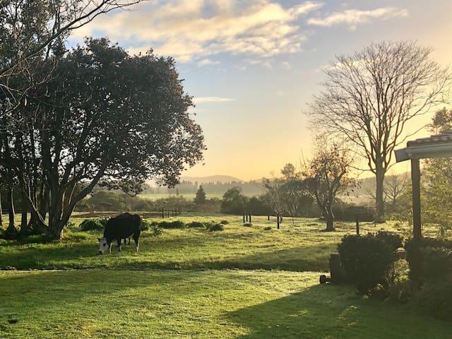Early morning (photo - Rick, USA)