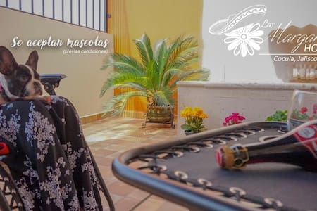 Las Margaritas Hostal Boutique en Cocula 1