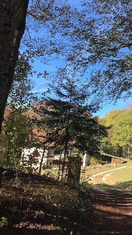 Ferme typique de montagne - Hotonnes - Hus
