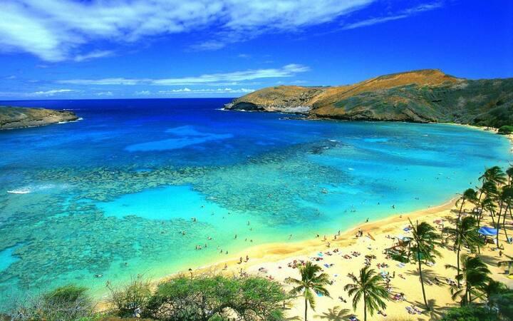 Hawaii Dream! Comfy Unit, Pool
