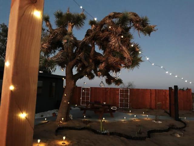 The Desert Bungaloww