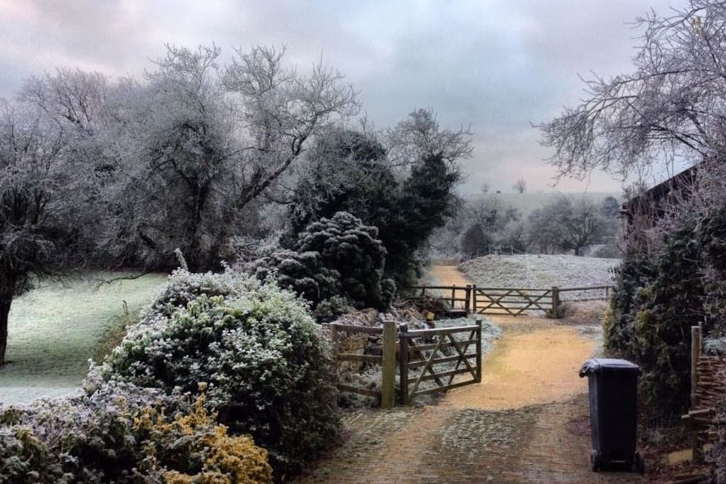 View from the house into the paddocks on a frosty morning.