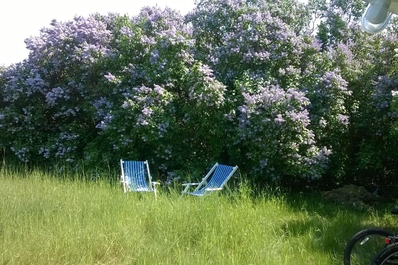 Välkommen och andas i mitt lilla paradis! Här bor du i ett gästhus som ligger avskilt på min stora tomt, omgiven av grönska!