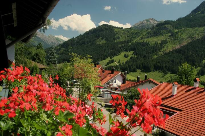 Ferienwohnung im Schwandenhof