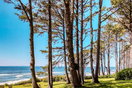 Romantic oceanfront cottage in the heart of the forest w/ incredible sea views