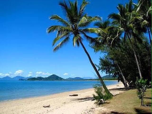 Palm Cove GEM