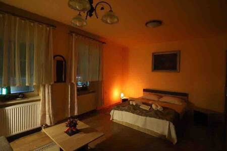 Friendly Apartment/flat .