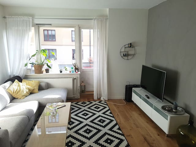 Large renovated apt. w/ sunny balcony, city centre - Oslo - Appartement