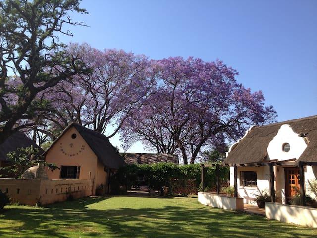 Umguza Rustic Charm near Bulawayo - Bulawayo - Villa