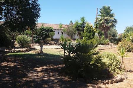 O Ninho in rural Alentejo - 8713/AL - Ourique - Apartamento