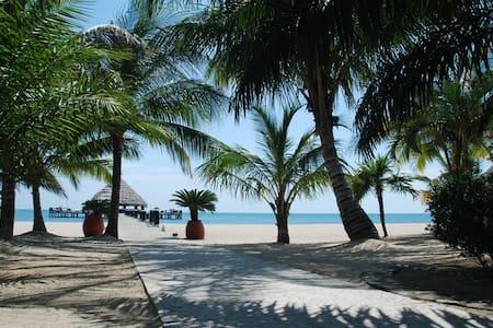 Beachfront condo in Paradise - Seine Bight - Wohnung