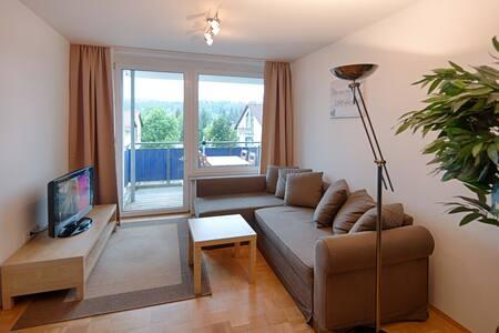 2 Zi.-Wohnung 60m² (Küche, Bad, Balkon) im Zentrum
