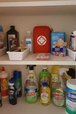First aid kit, OTC meds, detergents and disinfectants.