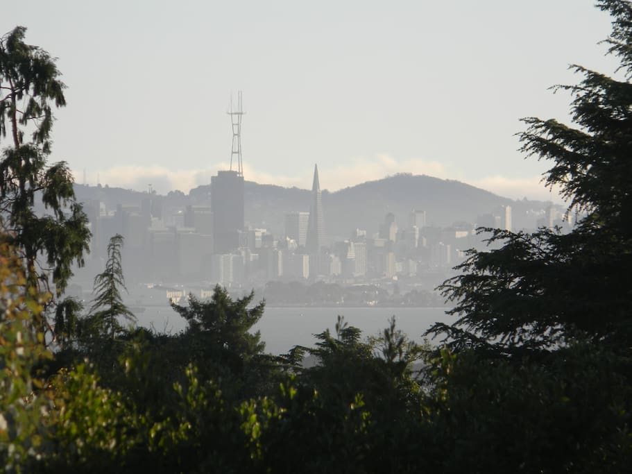View of downtown San Francisco from living room