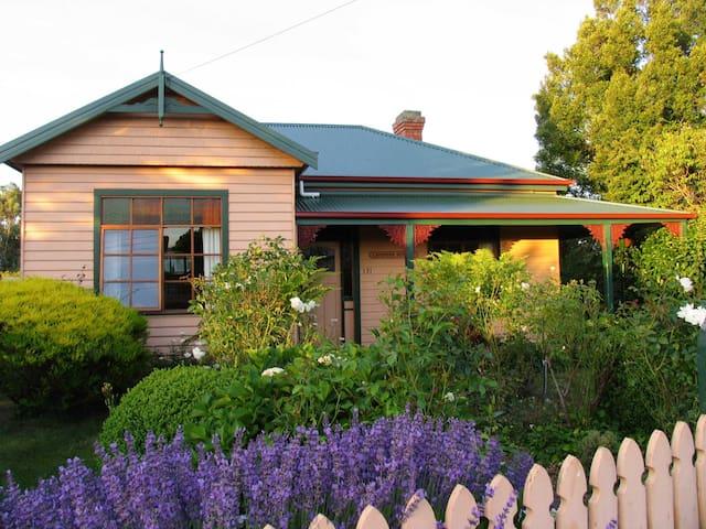 Westbury Lavender Cottage - Westbury