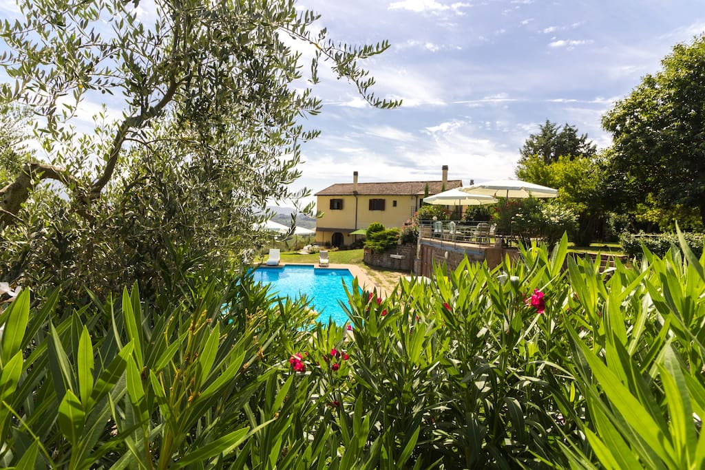 view of the villa with its luscious garden and large pool