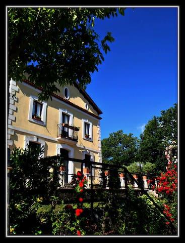 Antico villino fra Lauria e Maratea - Lauria - Appartement
