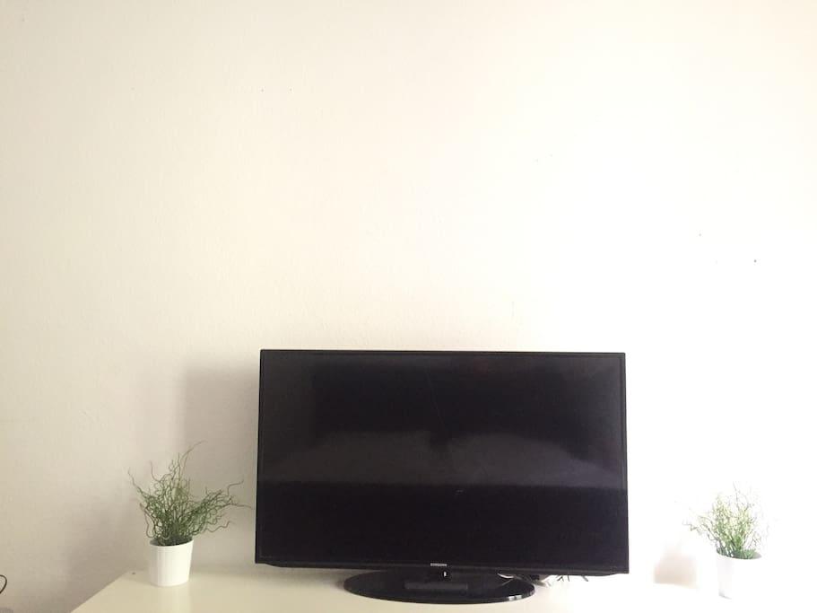 TV / APPLE TV