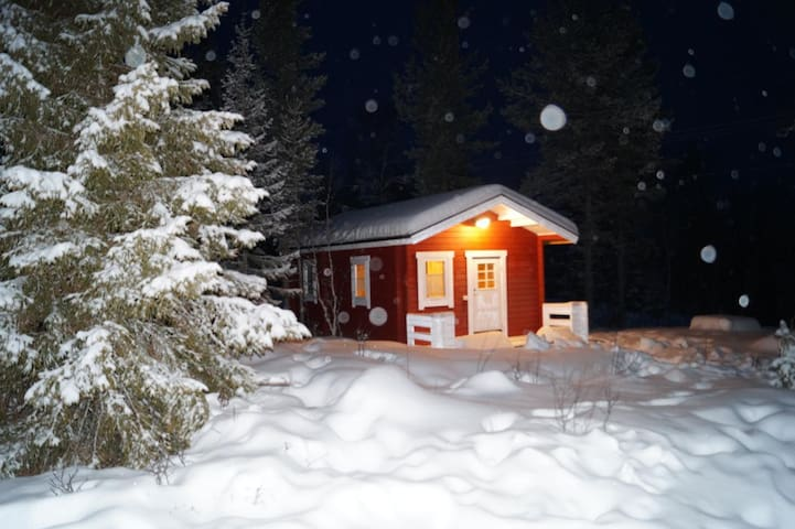 Ferienhaus Fjällräv