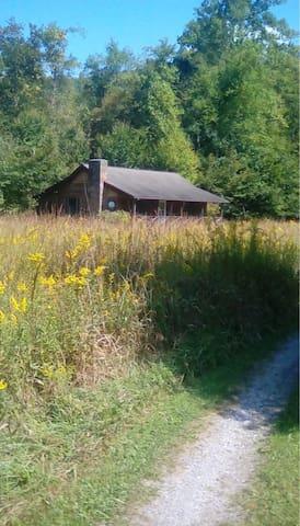 Whispering Meadow