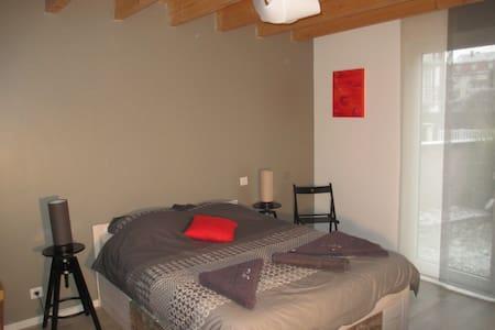 Chambre avec salle de bain privée. Strasbourg 10' - Illkirch-Graffenstaden