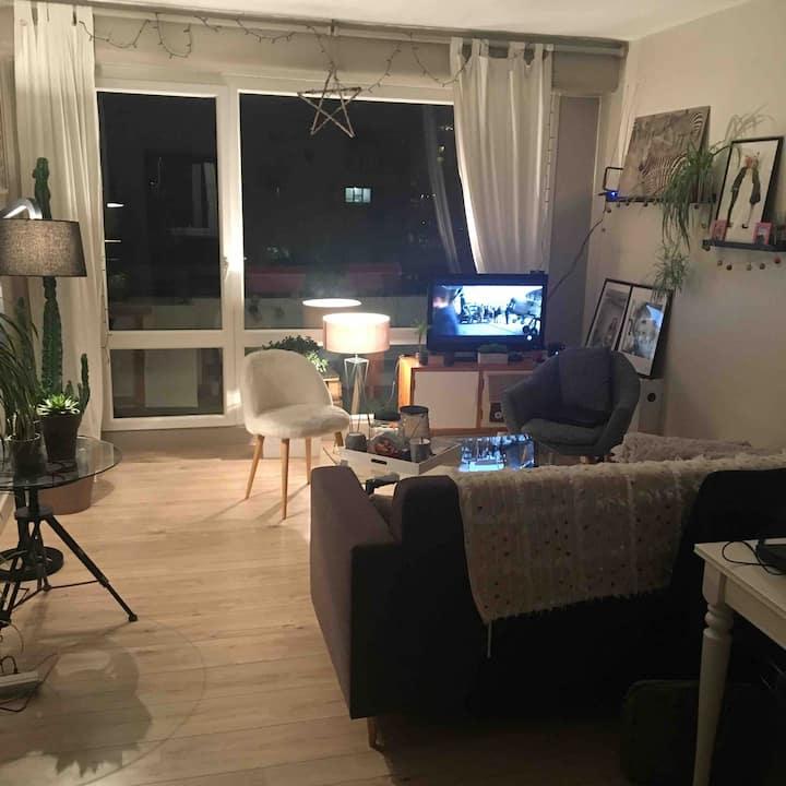Appartement bord de Loire - Nantes (Mangin)