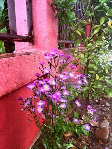两层楼的泰式小楼,楼上三间,楼下我自己住一间,有小花园,小凉亭 - Tambon Wiang Tai - 別荘