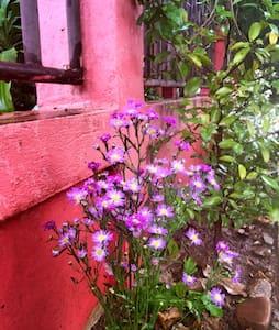 两层楼的泰式小楼,楼上三间,楼下我自己住一间,有小花园,小凉亭 - Tambon Wiang Tai