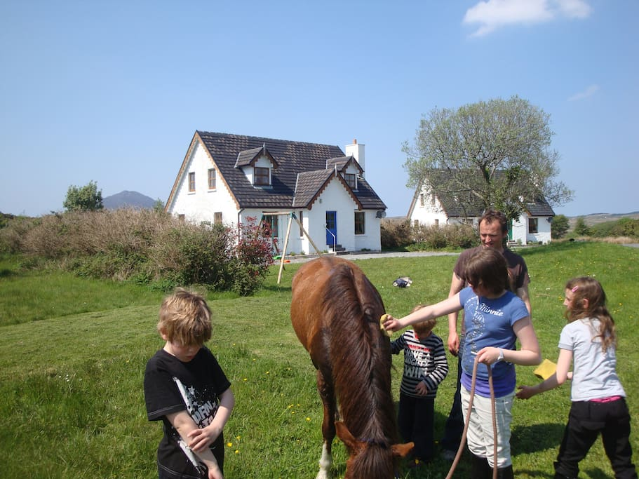 Pony and children - Letterfrack Farm