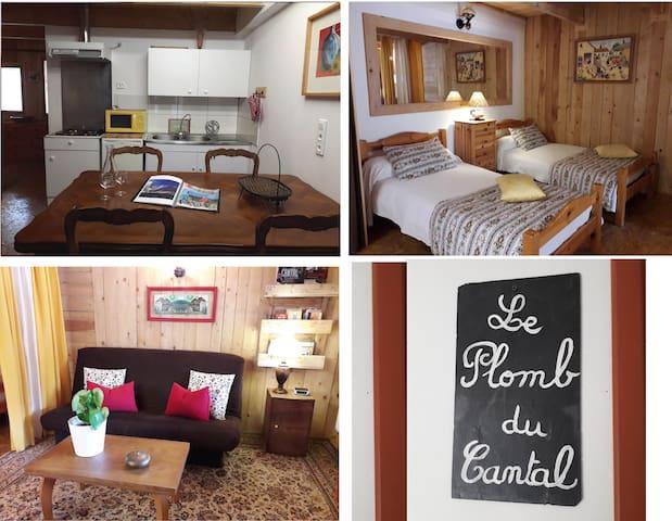 Le Plomb du Cantal: Studio spacieux avec terrasse