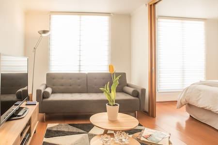 New !!! In the heart of Lastarria !!! - Apartment