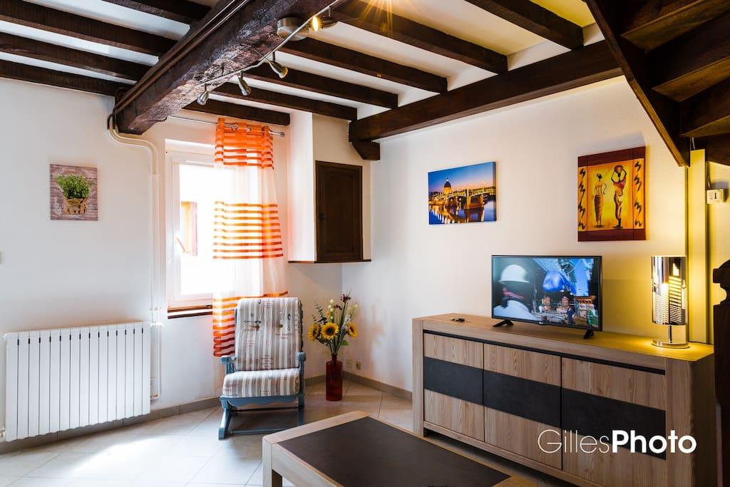 Salon séjour avec canapé, TV