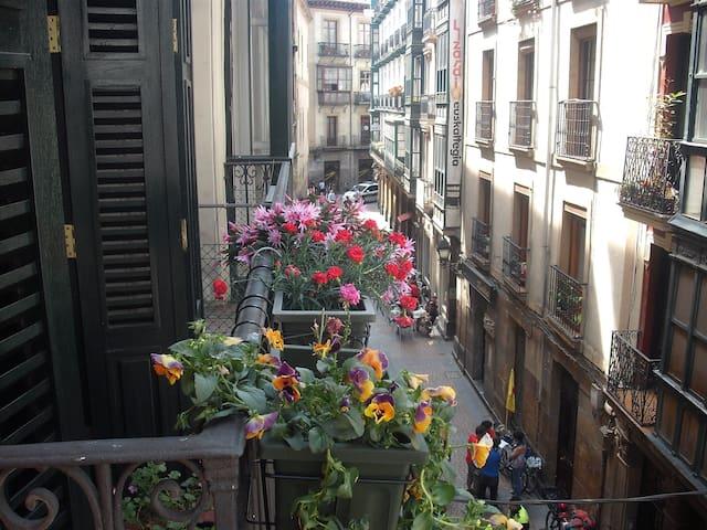 piso situado en el casco antiguo - Bilbao - Casa