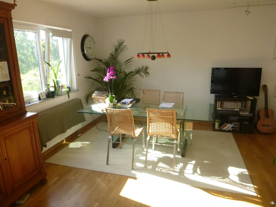 Living Room / Dining Space